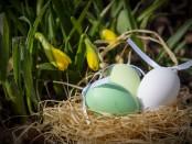 easter-eggs-3257093_1920